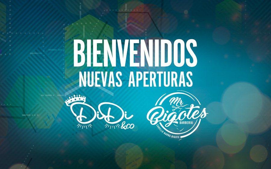 nuevas aperturas DiDi & Co y Mr. Bigotes